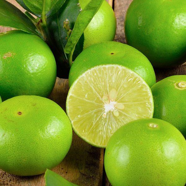 citron-vert-parfum-bougie-cosmetique
