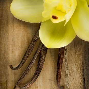 15900349 - vanilla pods and flower over wooden background