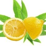 verveine-citron