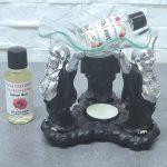 brule-parfum-bouddha-ganesh-elephant (3)