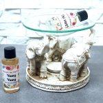 brule-parfum-bouddha-ganesh-elephant (34)